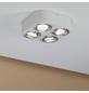 PAULMANN LED-Deckenleuchte aluminiumfarben 4-flammig, dimmbar, inkl. Leuchtmittel-Thumbnail
