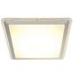 NÄVE LED-Deckenleuchte »Bradfort«, inkl. Leuchtmittel in warmweiß-Thumbnail