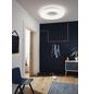 wofi® LED-Deckenleuchte »COUNTY«, dimmbar, inkl. Leuchtmittel in tageslichtweiß-Thumbnail