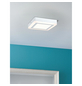 PAULMANN LED-Deckenleuchte »Sol« weiß 1-flammig, inkl. Leuchtmittel in warmweiß-Thumbnail