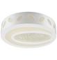 LED-Deckenleuchte »VANILLA I« weiß 1-flammig, inkl. Leuchtmittel in neutralweiß-Thumbnail