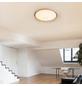 GLOBO LIGHTING LED-Hängeleuchte »RUDI« weiß 1-flammig, dimmbar, inkl. Leuchtmittel-Thumbnail