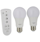 SCHWAIGER LED-Leuchtmittel »HOME4YOU«, 9 W, E27, 2700 – 6500 K, 806 lm-Thumbnail