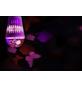 wofi® LED-Leuchtmittel »WOFI Led E27«, 4 W, E27, RGB (mehrfarbig), 10 lm-Thumbnail