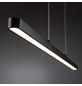 PAULMANN LED-Pendelleuchte »Lento«, dimmbar, inkl. Leuchtmittel in warmweiß-Thumbnail