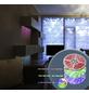 GLOBO LIGHTING LED-Streifen, 500 cm, mehrfarbig/weiß, 475 lm, dimmbar-Thumbnail