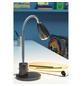 EGLO LED-Tischleuchte »FOX« anthrazit, Schirm-Ø x H: 5,5 x 33,2 cm, GU10 inkl. Leuchtmittel in Warmweiß-Thumbnail