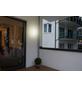 MÜLLER LICHT LED-Wand- und Deckenleuchte »Bulkhead «, 8 W-Thumbnail