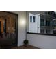 MÜLLER LICHT LED-Wand- und Deckenleuchte »Bulkhead«, 8 W-Thumbnail