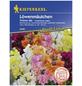 KIEPENKERL Löwenmäulchen, Agropyron repens, Samen, Blüte: mehrfarbig-Thumbnail