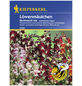 KIEPENKERL Löwenmäulchen, Antirrhinum majus, Samen, Blüte: mehrfarbig-Thumbnail