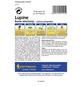 KIEPENKERL Lupine, Lupinus polyphyllus, Samen, Blüte: mehrfarbig-Thumbnail