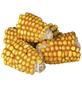 TRIXIE Maiskolben-Snack »Pure Nature«, für Nagetiere, Mais-Thumbnail