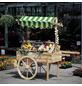 PROMADINO Marktwagen, BxLxH: 173 x 82 x 184 cm, Kiefernholz/Baumwolle-Thumbnail