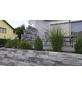 EHL Mauerstein »Anbario«, BxLxH: 15 x 12 x 60 cm, Beton-Thumbnail