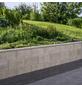 EHL Mauerstein, BxLxH: 17,5 x 25 x 50 cm, Beton-Thumbnail