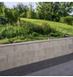 EHL Mauerstein, BxLxH: 17,5 x 50 x 25 cm, Beton-Thumbnail