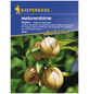 KIEPENKERL Melonenbirne, Salvia splendens, Samen, Blüte: mehrfarbig-Thumbnail