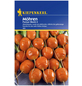 KIEPENKERL Möhre carota ssp. sativus Daucus »Pariser Markt 5«-Thumbnail