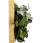 Moosbild Eichenrahmen, BxHxT: 57 x 27 x 8 cm, grün-Thumbnail