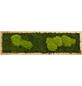 Moosbild Eichenrahmen Wald- und Ballenmoos, BxHxT: 20 x 70 x 6 cm-Thumbnail