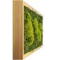 Moosbild Lärchenrahmen, BxHxT: 20 x 70 x 6 cm, grün-Thumbnail