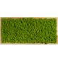 Moosbild Lärchenrahmen , BxHxT: 57 x 27 x 6 cm, grün-Thumbnail