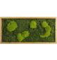 Moosbild Lärchenrahmen, BxHxT: 57 x 27 x 6 cm, grün-Thumbnail