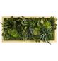 Moosbild Lärchenrahmen, BxHxT: 57 x 27 x 8 cm, grün-Thumbnail