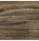 MR. GARDENER Mosaik-Marmorfliese B x L: 60 x 60 cm-Thumbnail