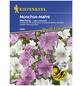 KIEPENKERL Moschus-Malve, Malva moschata, Samen, Blüte: mehrfarbig-Thumbnail