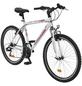 ONUX Mountainbike, 26 Zoll-Thumbnail