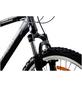 CHRISSON Mountainbike, 28 Zoll-Thumbnail