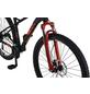 REX Mountainbike, 29 Zoll-Thumbnail