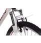 CHRISSON Mountainbike, 29 Zoll-Thumbnail