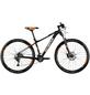 WHISTLE Mountainbike »Patwin 2160«, 29 Zoll, 20-Gang, Unisex-Thumbnail