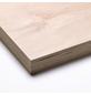 Multiplex-Platte, BxL: 2500 x 1250 mm, birkenfarben-Thumbnail