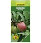 GARTENKRONE Nektarine, Prunus nucipersica »Flavortop«, Früchte: süß, zum Verzehr geeignet-Thumbnail