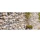BELLISSA Ösengabione, BxHxL: 50 x 50 x 100 cm, Stahl-Thumbnail