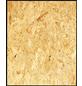 OSB-Platte, B x L: 675  x 2050   mm-Thumbnail