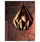 EGLO Pendelleuchte »Carlton 1«, Stahl-Thumbnail