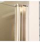 Pendeltür, Doppelflügeltür, BxH: 110 x 195 cm-Thumbnail