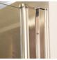 Pendeltür, Doppelflügeltür, BxH: 80x195 cm-Thumbnail