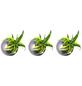 Pflanzen in Keramik 3er-Set Ball, anthrazit, BxHxT: 12 x 12 x 22  cm-Thumbnail