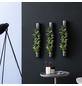 Pflanzen in Keramik 3er-Set bigTube, anthrazit, BxHxT: 65 x 7,5 x 22  cm-Thumbnail