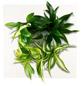 Pflanzenbild »Flowerwall«, BxHxT: 31 x 31 x 22 cm, weiß-Thumbnail
