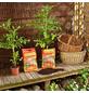 FLORAGARD Pflanzenerde »Aktiv«, für Tomaten und Gemüse-Thumbnail