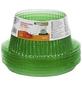 WINDHAGER Pflanzenschutz »PROTECTION«, 24 mm, Kunststoff (PET)-Thumbnail