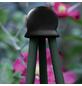 Peacock Pflanzenstütze, BxHxT: 9 x 14,5 x 0,5 cm, Gummi-Thumbnail