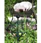 Peacock Pflanzenstütze, ØxH: 6 mm x 75 cm, Stahl-Thumbnail